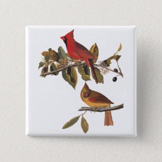 Cardinal Grosbeak Birds Audubon Nature Vintage Art Pinback Button