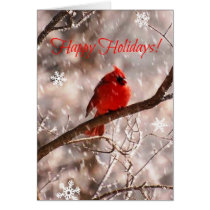 Cardinal Happy Holidays! Card