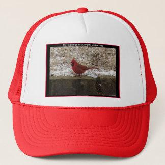 Cardinal Hot Springs Nat. Park Mountain AR Gifts Trucker Hat