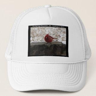 Cardinal Hot Springs Nat. Park Mt AR Gifts Apparel Trucker Hat