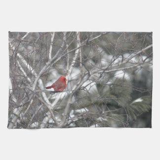 Cardinal in a Birch Tree Towel