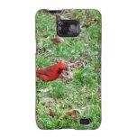 Cardinal In A Field Galaxy S2 Cases