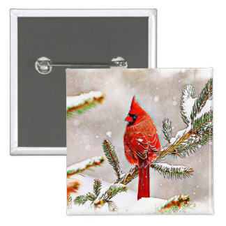 Cardinal in a pine tree 2 inch square button