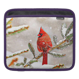 Cardinal in a pine tree in winter iPad sleeves
