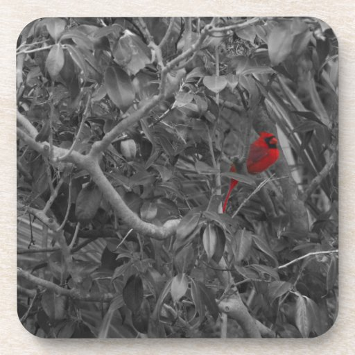 Cardinal in a Tree Cork Coaster