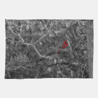 Cardinal in a Tree Kitchen Towels