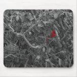 Cardinal in a Tree Mousepad