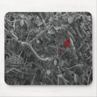 Cardinal in a Tree Mousepad