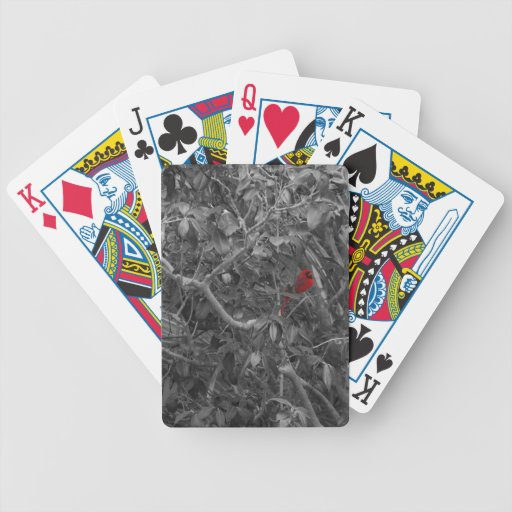 Cardinal in a Tree Playing Cards