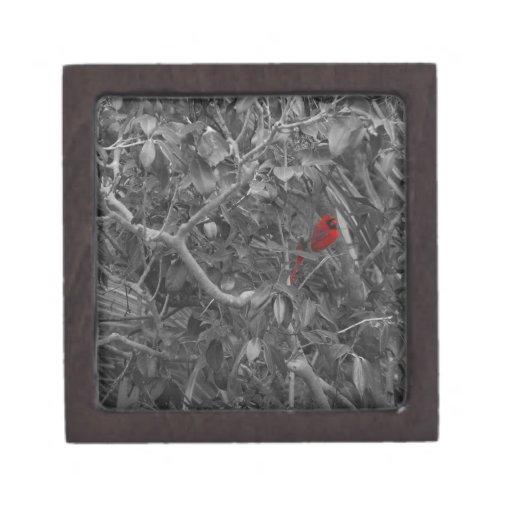 Cardinal in a Tree Premium Gift Box
