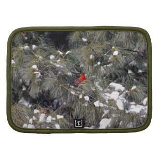 Cardinal in a White Pine Folio Planner
