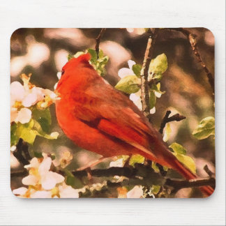 Cardinal in Apple Blossoms Mouse Pad