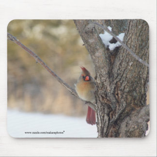 Cardinal in Ash tree-customize with words Mouse Pad