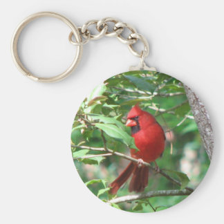 Cardinal in Holly Keychain