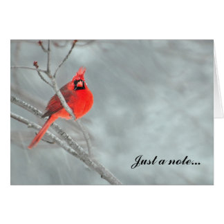 Cardinal in Snow Stationery Note Card