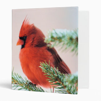 Cardinal in Snow Dusted Fir 3 Ring Binder