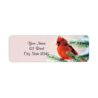 Cardinal in Snow Dusted Fir Label