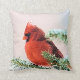 Cardinal in Snow Dusted Fir Pillows