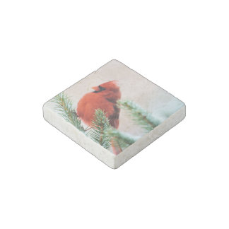 Cardinal in Snow Dusted Fir Tree Stone Magnet