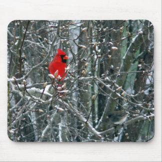 Cardinal in Snow Mouse Mats