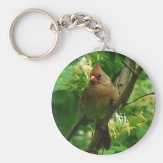 Cardinal in the honeysuckles keychain
