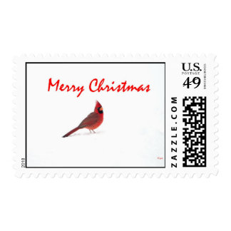Cardinal in the snow Christmas postage stamp