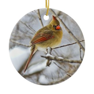 Cardinal in the snow - ornament ornament
