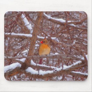 Cardinal in the Snow Painting Mouse Pad