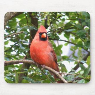 Cardinal in Tree Mousepad