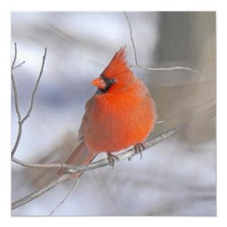 Cardinal 5.25x5.25 Square Paper Invitation Card