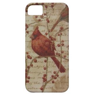 Cardinal iPhone SE/5/5s Case