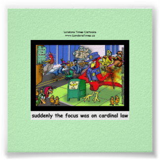 Cardinal Law Funny Law Or Bird Poster