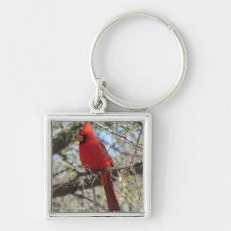 Cardinal Llaveros Personalizados