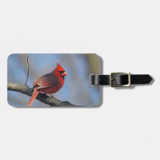 Cardinal Bag Tag