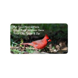 Cardinal Mailing Label