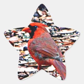 Cardinal (Male) Star Sticker