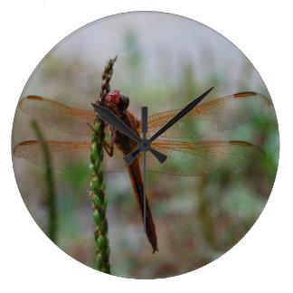 Cardinal Meadowhawk Dragonfly Large Clock