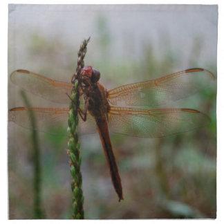 Cardinal Meadowhawk Dragonfly Napkin