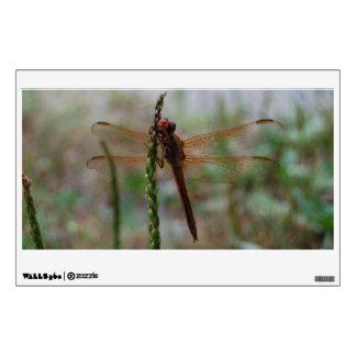 Cardinal Meadowhawk Dragonfly Wall Decal