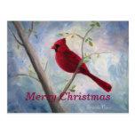 cardinal, Merry Christmas Postcard