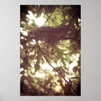 Cardinal Nest Print