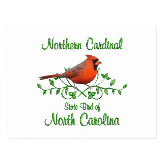 Cardinal North Carolina Bird Postcard