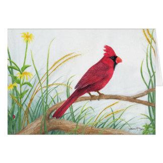Cardinal - Note Card
