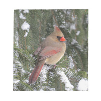 Cardinal Notepad
