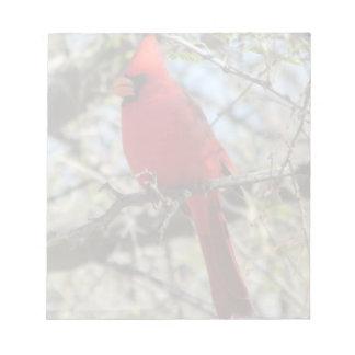 Cardinal Memo Notepads