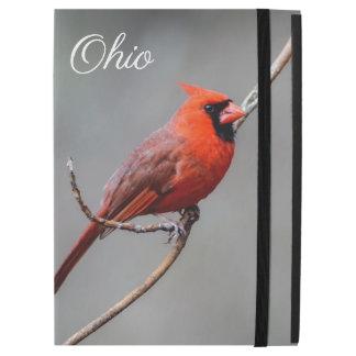 Cardinal Ohio iPad Case