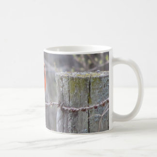Cardinal on barbed wire mugs