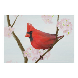Cardinal on Cherry Blossom Poster