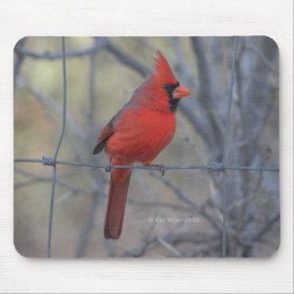 Cardinal on fence - 2009 mouse mats