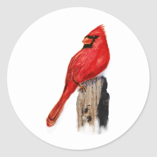Cardinal on Post Round Stickers